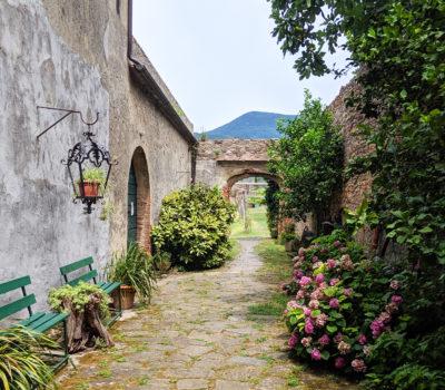 Italian countryside by a farmhouse